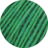 ECOPUNO - Grün - 41